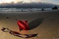 christmas ornament, beach, californias, ocean
