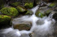 Stream with Mossy Rocks