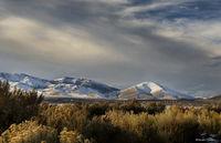 cold springs, nevada, desert, nevada, landscape, christmas, snow