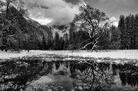 yosemite, meadows, pond, winter, reflection, B&W, ron, ron saunders, ronald, ronald j saunders, prints