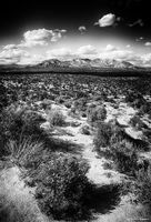 Ron, Ronald, Saunders, photography, black, white, desert, Black Rock, Nevada, Landscape, mountains, exhibition, America, Art, Federation, artist, image, high rock,