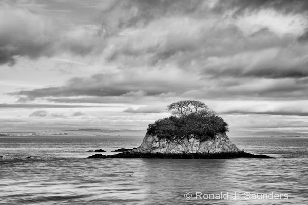 Black And White Photography Beach Landscapes Beach Landscape Photography