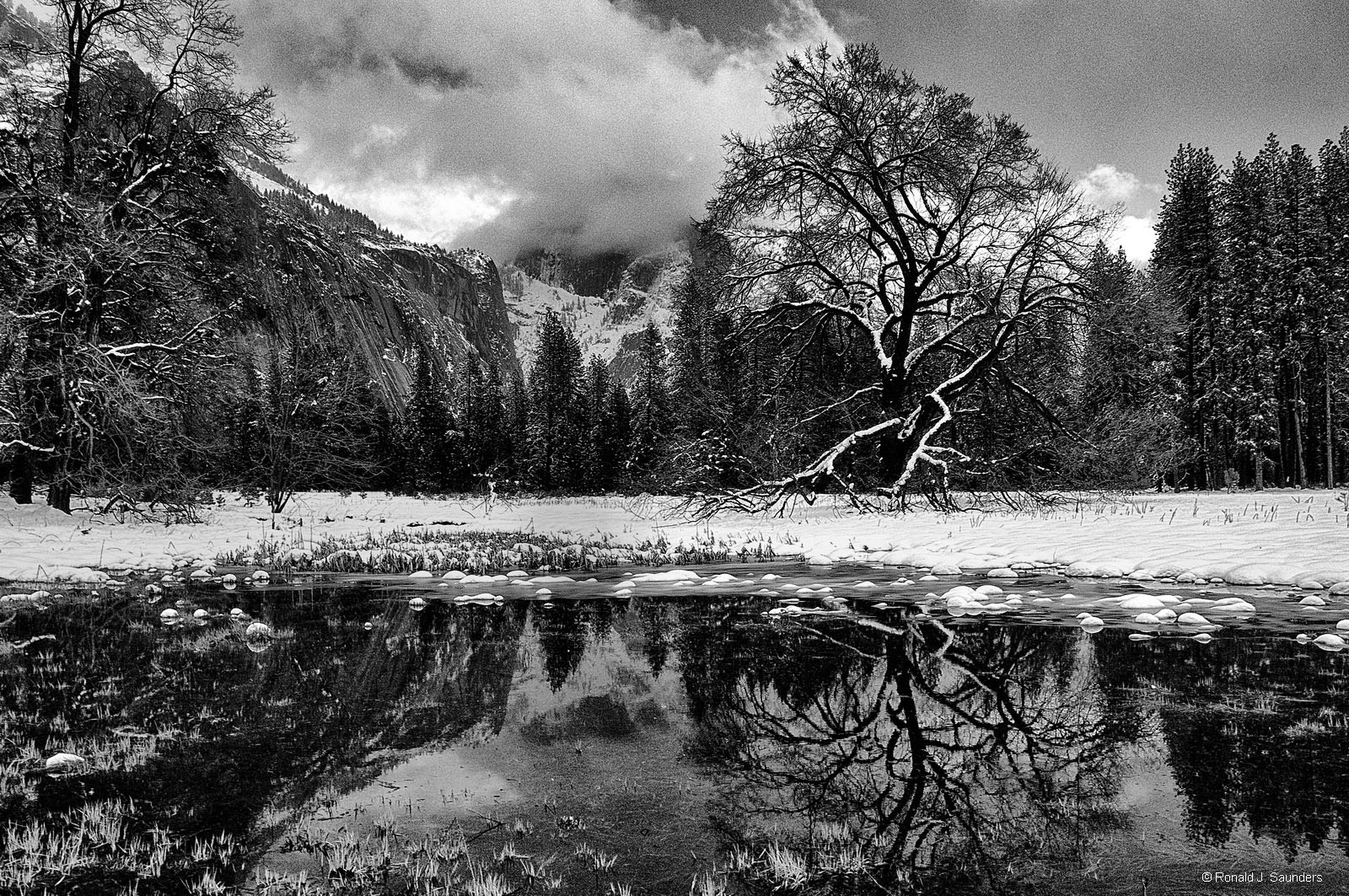 yosemite, meadows, pond, winter, reflection, B&W, ron, ron saunders, ronald, ronald j saunders, prints, photo