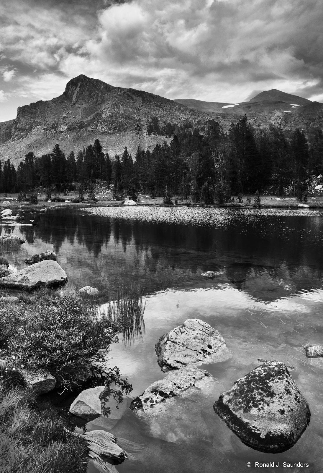 Mount Dana, ronald, saunders, Yosemite, National Park, lake, reflection, best image, photograph, black and white, landscape, image, photo