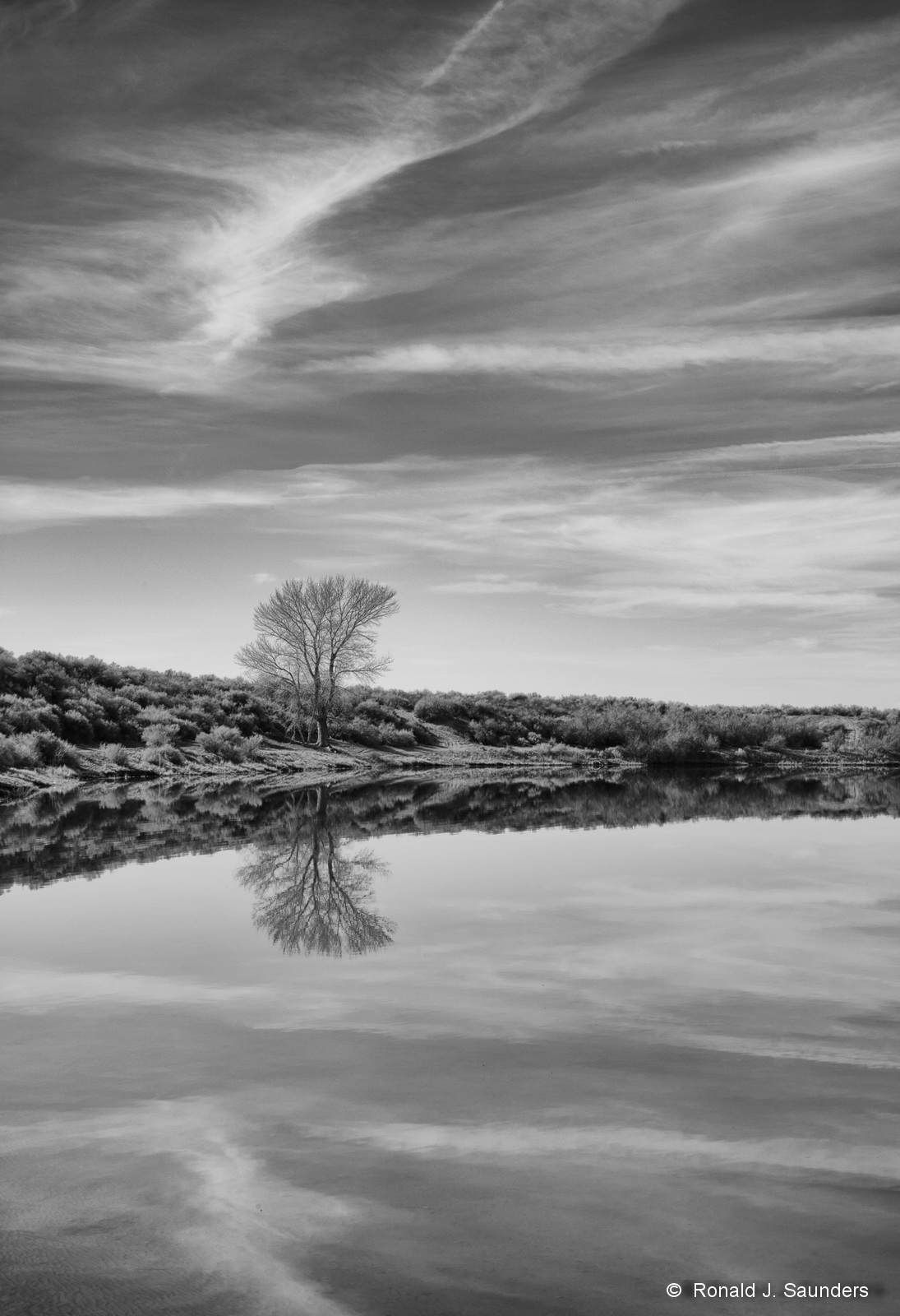 ron, ronald, saunders, photography, nevada, best of, landscape, scenic, black, white,  marr, volcano, falon, desert, reflection, tree, soda, lake, photo